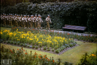 U.S. troops in a garden in Normandy, summer 1944. © Life