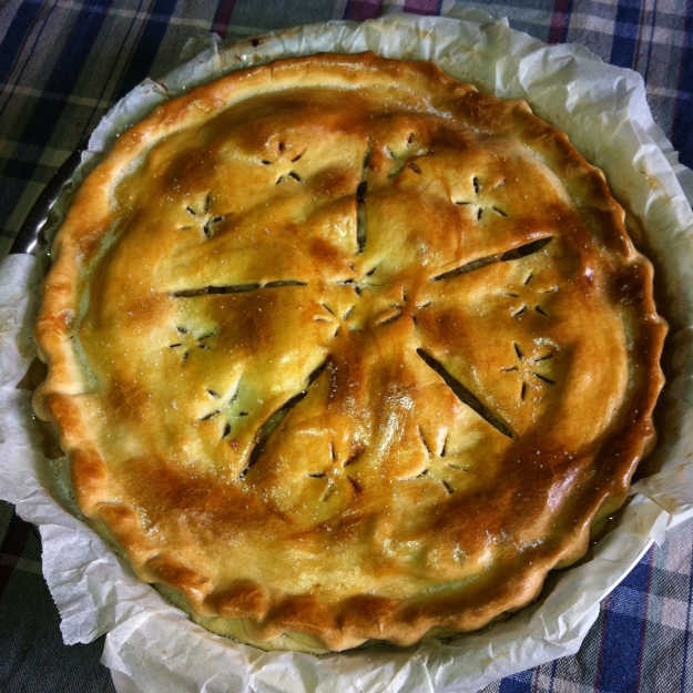 My very first apple pie © 2012 Samuel Michael Bell
