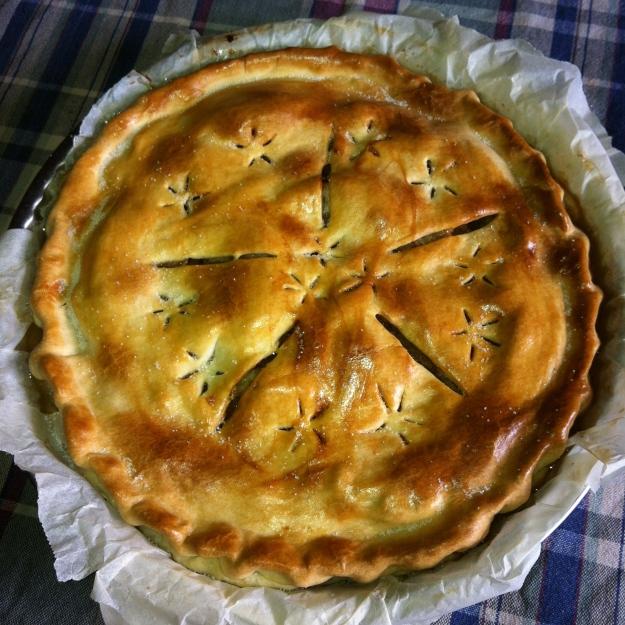 My very first apple pie © 2012 Samuel Michael Bell