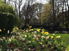Le jardin royal (the Royal Garden)