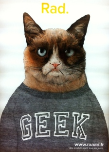 Even Grumpy Cat has made an appearance!